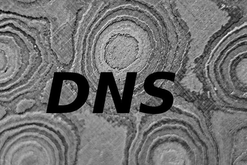 damascus-dns